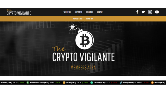 WHat is The Crypto Vigilante