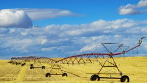 Advantages of Commercial Farming